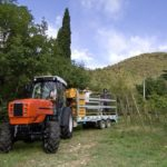 SAME FRUTTETO³ S Vineyards and Orchards Tractors Price Specs