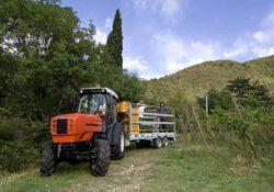 SAME FRUTTETO³ S 90.3 Tractor