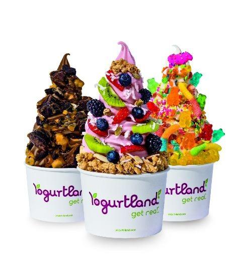 Yogurtland's Customer Experience Survey
