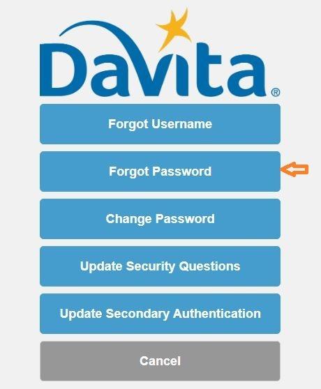 Davita Village Web