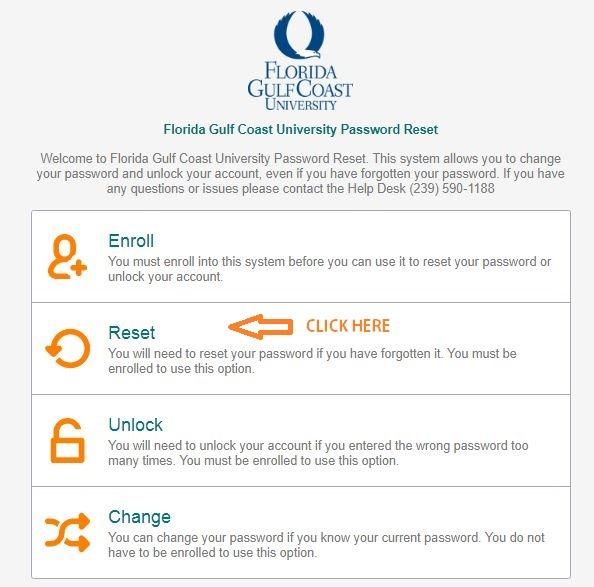 FGCU Canvas password 1