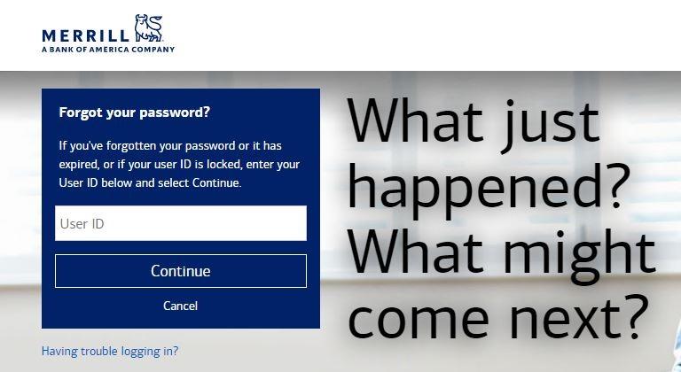 Merrill Lynch Login forgot password 1