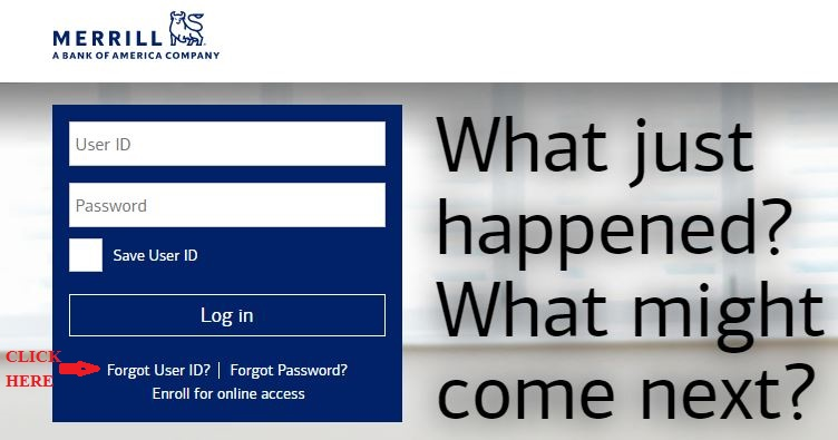 Merrill Lynch Login forgot user ID 1